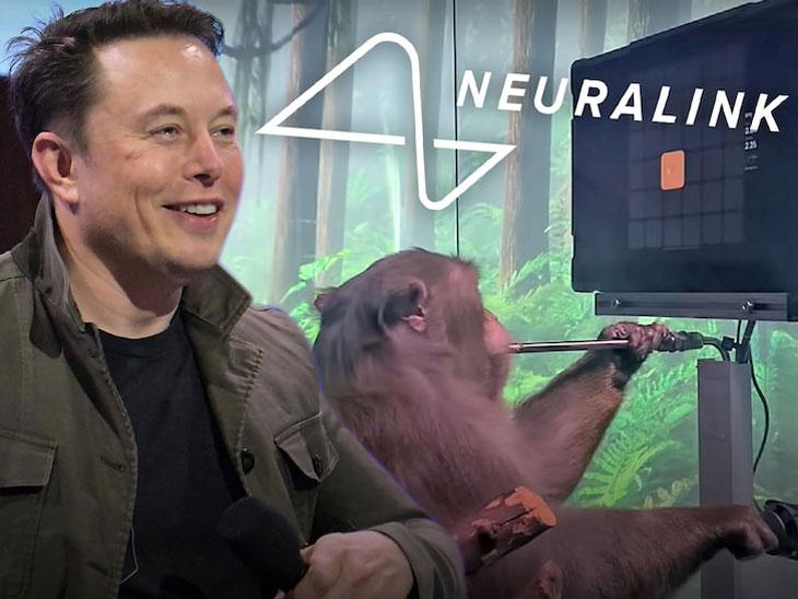 elon musk monkey neurolink