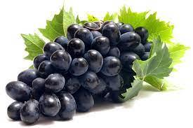 Во Србија забранет увоз на грозје од Северна Македонија поради пестициди