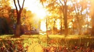 Времето денеска ќе биде сончево со променлива облачност